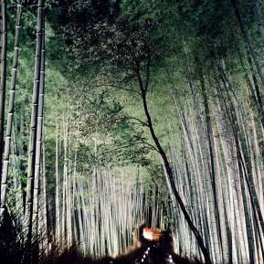 arashiyama-3sm_16500517985_o